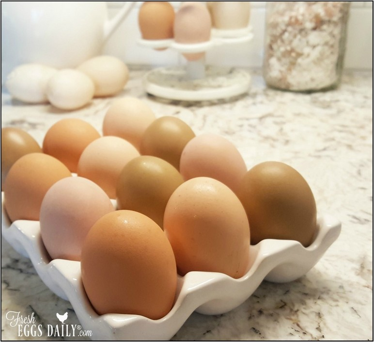 How Soon Do Fresh Eggs Need To Be Refrigerated