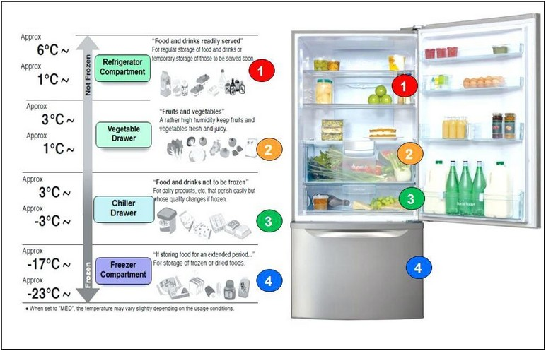 Ideal Refrigerator And Freezer Temperatures