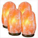 Where To Buy A Himalayan Salt Lamps