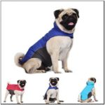Winter Jackets For Dogs India