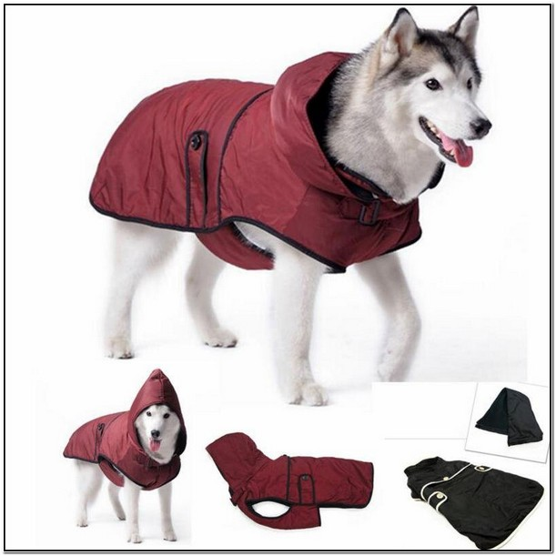 Winter Jackets For Large Dogs